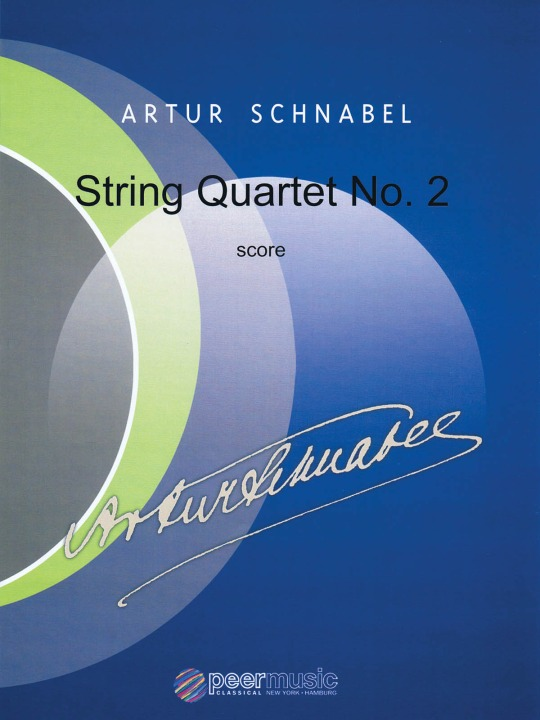 STRING NO2 SCHNABEL.jpg